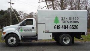 San Diego Tree Service Arborist Truck